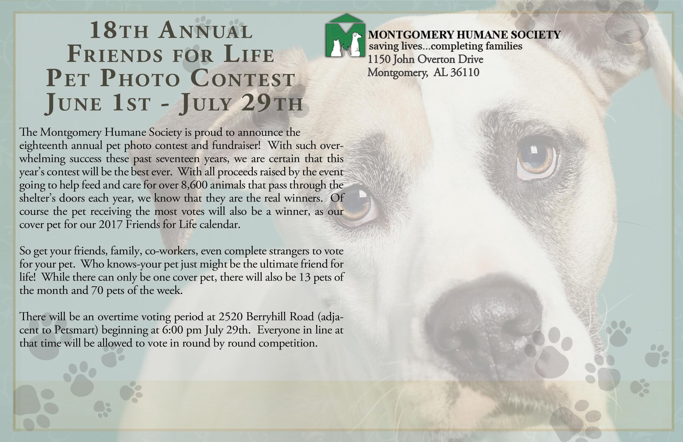 Pet Photo Contest Postcard « Montgomery Humane Society
