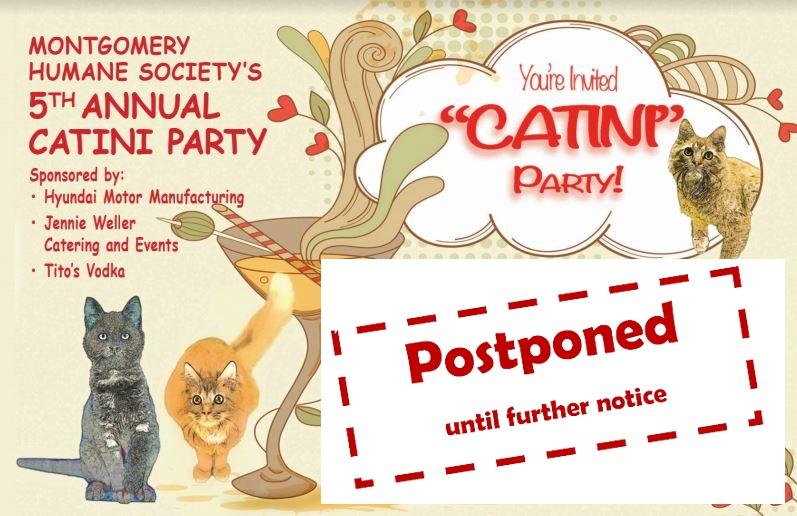 CatiniPostponedFacebookEvent