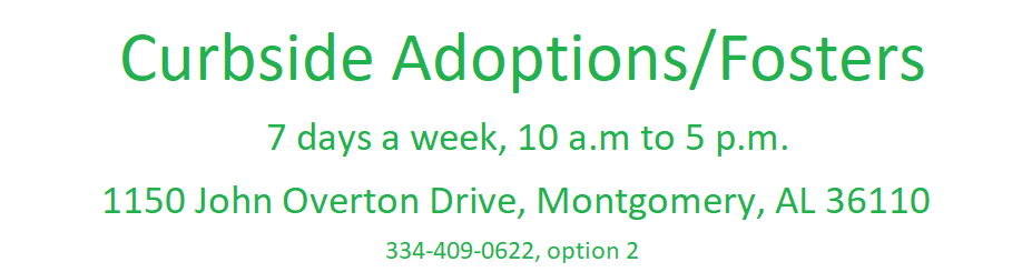 Curbside Adoptions